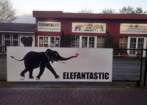 elefanten museum lilienthal